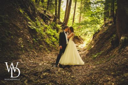fotograf ślubny, plener w lesia