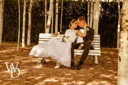 sesja ślubna, las, brzozy. Para młoda w ogrodach Kapias.