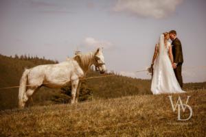 Biały koń, fotograf na wesele, weselnydzien.pl-2